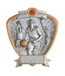 Signature Series Basketball Shield Awards All Trophy Awards