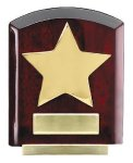 Star Dome Corporate Plaques Stand Employee Awards