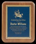 Plaque with Diamond Plate Award Fire and Safety Awards