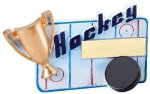 Winners Cup Resin Hockey Hockey Trophy Awards