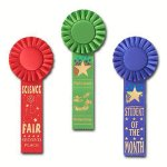 Scholastic Rosette Award Ribbon Track Trophy Awards